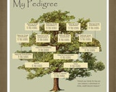 Personalized Pedigree Family Tree Gift / Personalized Birthday or Anniversary Gift