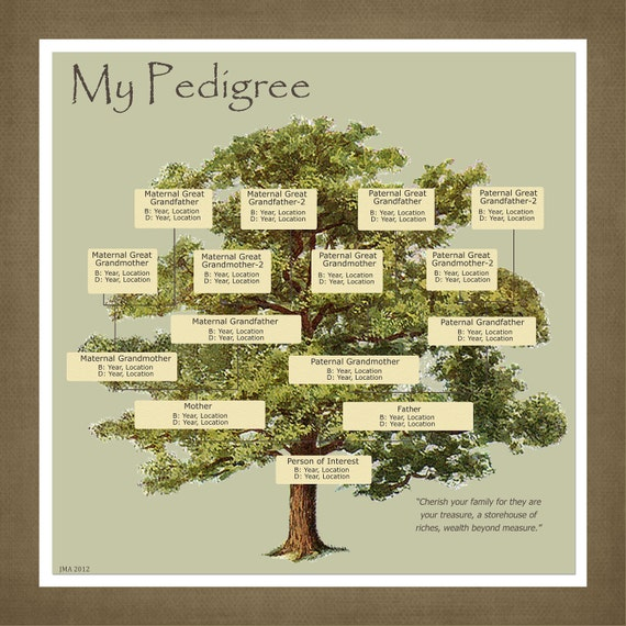 Wedding Tree Genealogy Chart By Melangeriedesign On Etsy: Items Similar To Personalized Pedigree Family Tree Gift