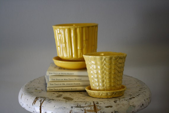 McCoy Bamboo Patterned Planter with Saucer