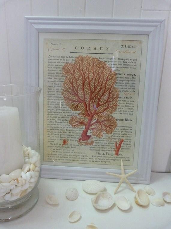 Cavallini Coral Prints White Frame Coastal Antique French