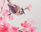 Cherry Blossom & Bird original watercolour painting 8 x 10 inches
