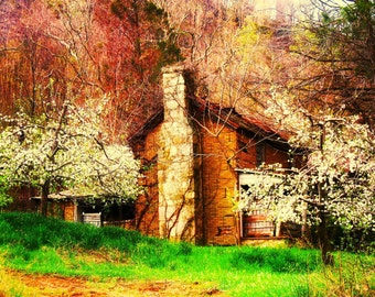 """Blue Ridge Mountains/ Old Apple Orchard House in Spring/ Apple Blossoms / Art Photograph / Color Print 8.5"""" x 11"""""""