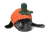 HALLOWEEN dog costume halloween PET COSTUME pumpkin hat for cat dog x-small small medium puppy hood hoodie adjustable crochet