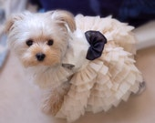 Soft White Elegant Dress for pet, beautiful handmade dog dress. dog fashion