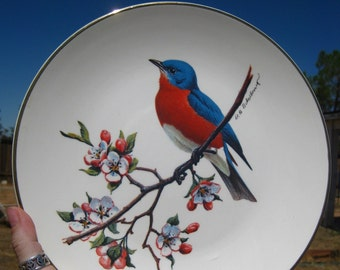 Avon Vintage Bluebird North American Songbird Plate Special Edition