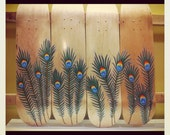 Peacock Feather Skateboard wall art