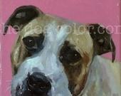 "CUSTOM Pet Portrait Oil Painting 10""x8""  commissioned"