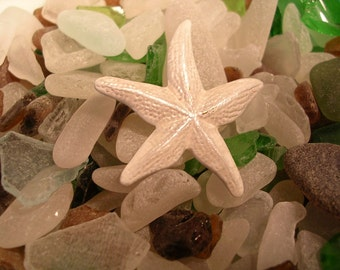 Starfish  Pin .  For beach Lovers. Hand Painted in Pearlescent White..