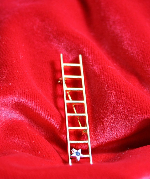 RESERVED - Unique Vintage Star Ladder Brooch
