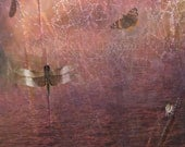 11X14 Archival Print Butterfly, Dragonfly, Beetle, Spider Web, Sunset Sustainable Fine Art on Bamboo Paper