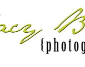 Pre-made Photography Logo/Watermark Design