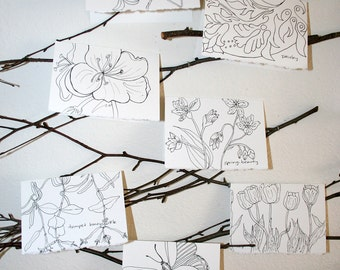 Black and White Illustration Notecard Set of 7