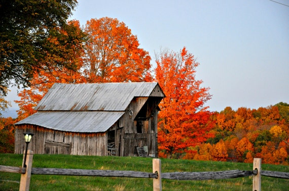 Barn, fall, home decor, fence, orange, vintage, vibrant, color, country, country decor