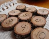 Number tiles or magnets - 1-10 -  wood burned hemlock rounds