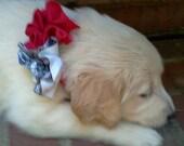 Flower Cutie - Patriotic