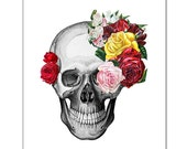 Vintage Skull and Roses - ART Print 8 x 10""