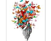 """Butterfly Shell - ART Print 8"""" x 10"""""""