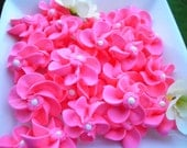 RESERVED for SHAUNNA Cupcake Toppers 100 edible toppers in Hot Pink royal icing flowers cupcake decorations