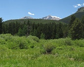 Longs Peak, Green Green Everywhere 5x7