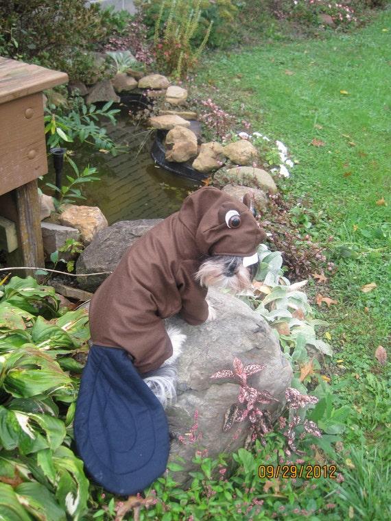 Beaver Halloween Dog Costume size Medium
