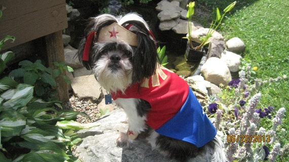 Wonder Woman inspired Dog Costume/Outfit Size Large