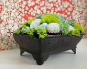 Vintage Japanese Metal Garden Planter - fill it with Springtime or make your own Zen Garden