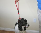 100% to RESCUE - handmade braided short dog lead CHOOSE COLOR by Senior Spaniel Rescue