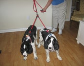 100% to RESCUE - braided long dog splitter CHOOSE COLOR by Senior Spaniel Rescue