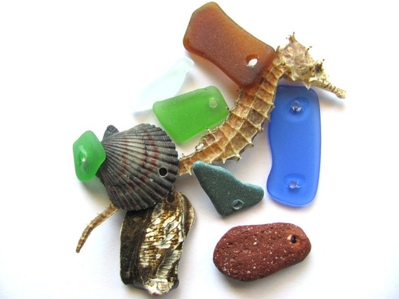 Sea Glass Shells Beach Stone Drilled DIY Destash Supplies at Hendyfinds