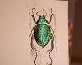 Irridiverescent. Diving beetle print with jewel like irridescent collage.