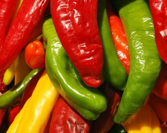 Yellow red and green chile peppers fine art photograph print 4x6