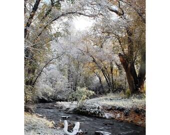 Winter frost stream fall colors snow fine art photograph print 5x7
