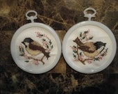 Small Finch Picture Set