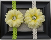 Yellow Flower with a Green Headband