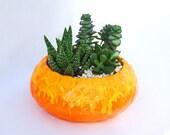 Orange succulent garden California Original Planter 1960s