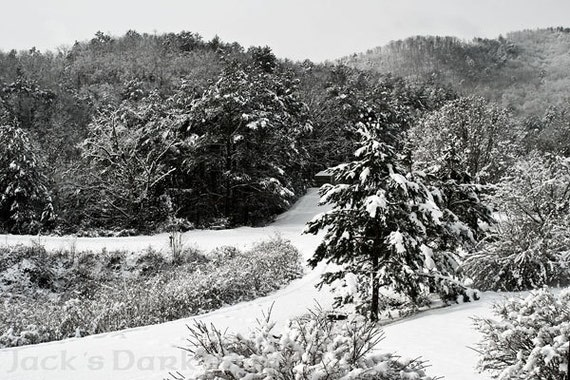 Landscape/Scenery--Wintry scene from an unexpected Christmas Day snowfall in the Appalachian Mountains.