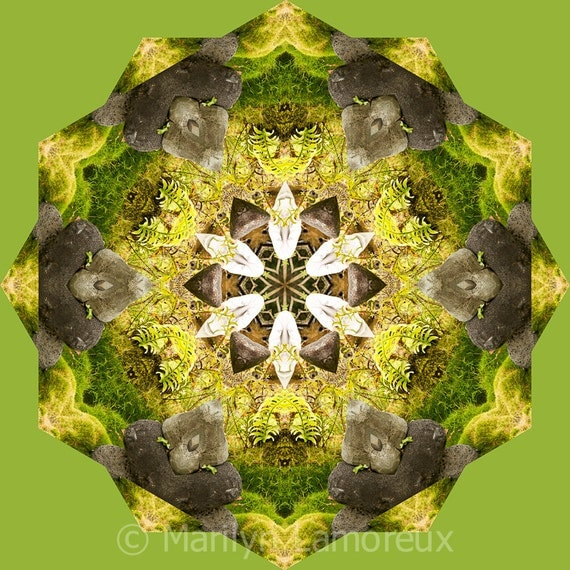 Abstract Nature Mandala Art Print, Zen Art, Geometric Art Print, Peaceful Round Art, Fine Art Print in Moss Green Brown