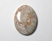 RESERVED Flor  Crazy Lace Agate Cabochon Oval
