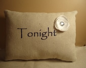 Custom listing for Melissa J. (15) Tonight - Not Tonight Pillows