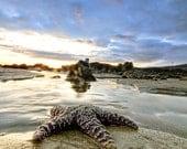 16 x 24- Gallery Wrap Canvas- Ocean Surf Photography- Malibu California Leo Carrillo Beach- Starfish- Sunset Photo Landscape Print- Fine Art