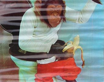 Vtg 1970's Go Bananas Monkey Hippie US Congress Poster