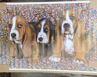 Vintage 1970's Adorable Bassett Hounds Colored Poster