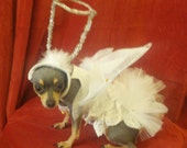 3 Piece Wedding Angel Baby Brides Maid Pet Flower Angel Pet Halo Hat with TuTu For Weddings or Christmas Angel Perfect Angel Luv By Kay