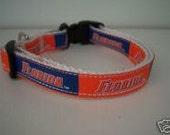 University of Florida Gators Dog Collar