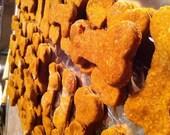 Pumpkin dog treats with peanut butter