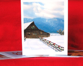 Winter 2010: 8 Note Card Set