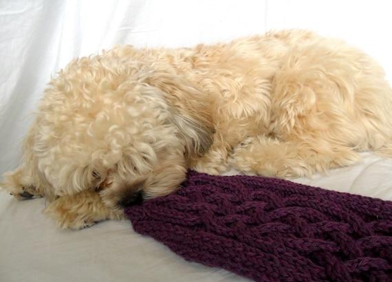 Small Dog Sweater - Celtic Cable, Purple Organic Yarn
