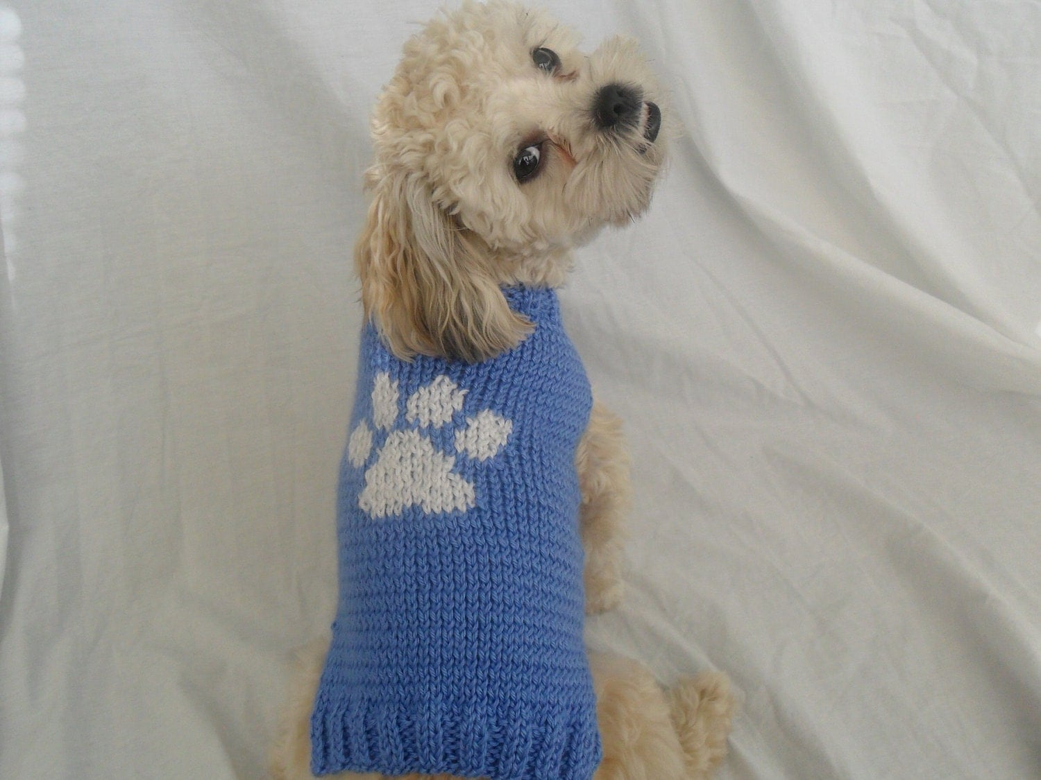 Knitting Pattern Large Dog Sweater : Hand Knit Blue Dog Sweater with paw print for small dogs