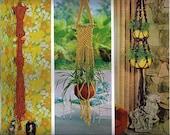 Macrame Hang Ups: Hanging lights, fish bowl, and plants of all sizes.