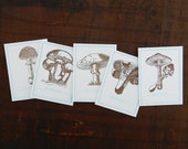 "Letterpress Mushroom Bookplates 3""x4"" - Set of 5"